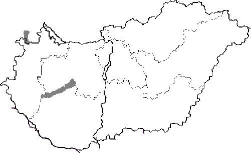 magyarország üres térkép Környezetünk Európa   11. Feladatlap : Nemzeti parkok Magyarországon magyarország üres térkép